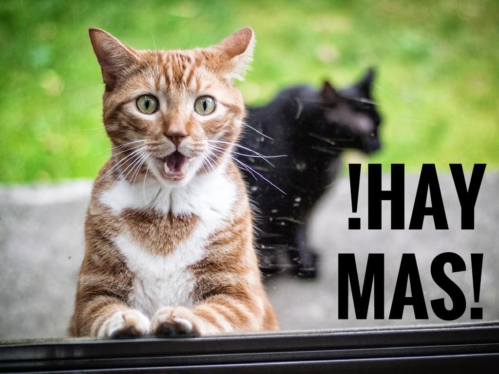 !HAY MAS!