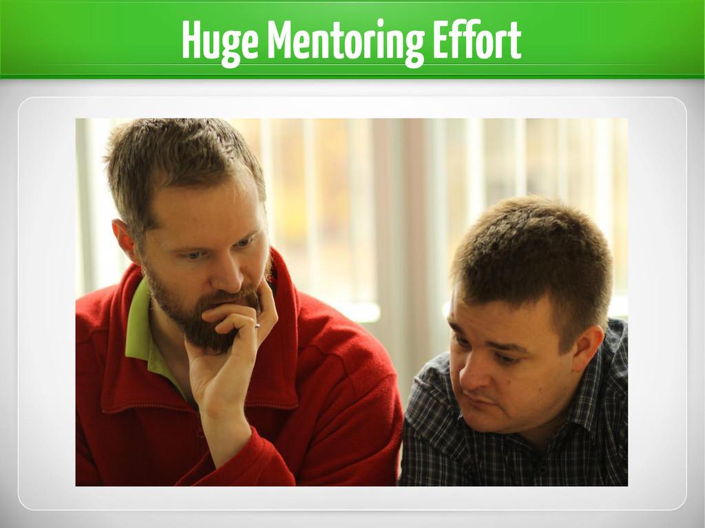 Huge Mentoring Effort