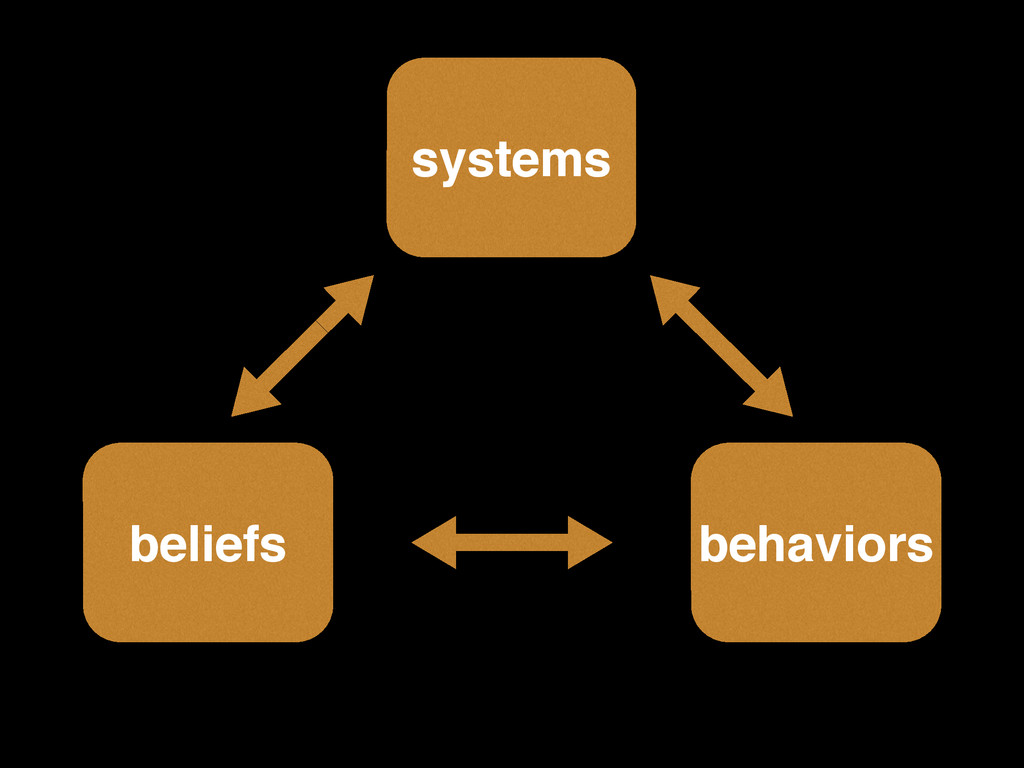 systems beliefs! behaviors