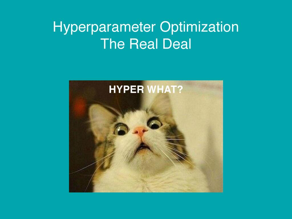 Hyperparameter Optimization The Real Deal HYPER...