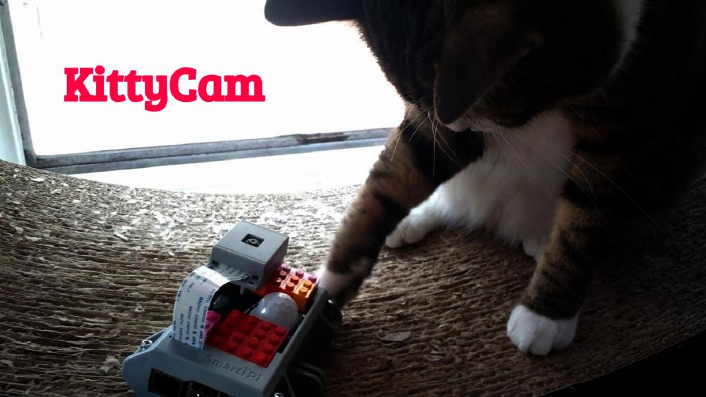 @girlie_mac KittyCam