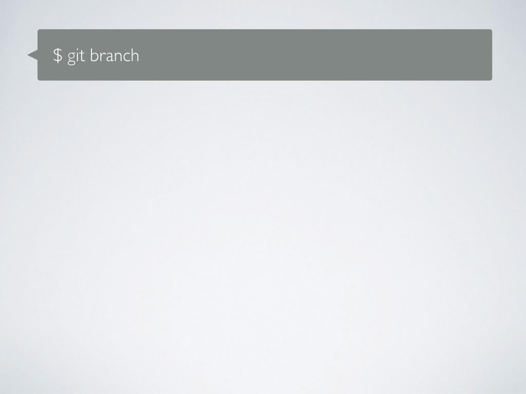 $ git branch