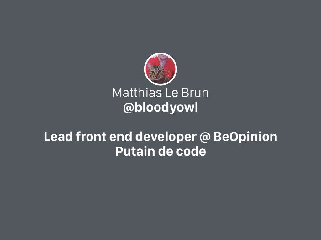 Matthias Le Brun @bloodyowl Lead front end deve...