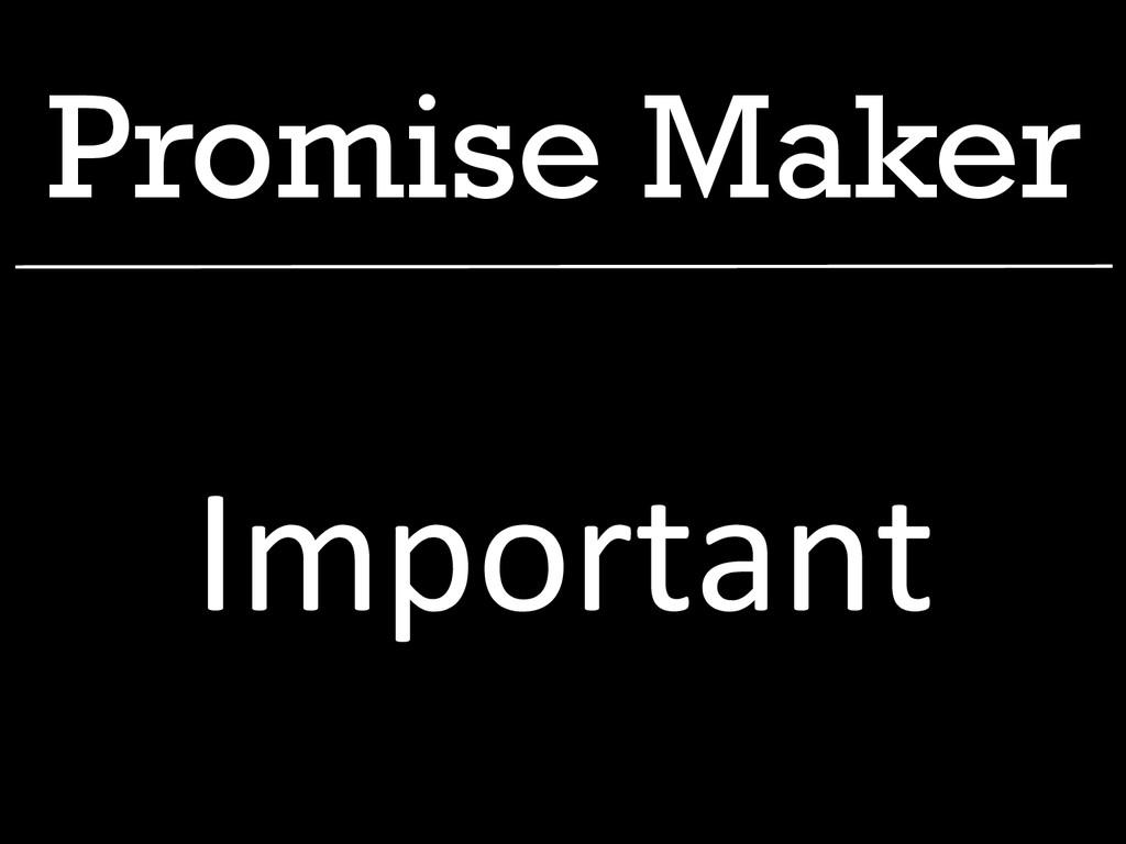 Promise Maker Important
