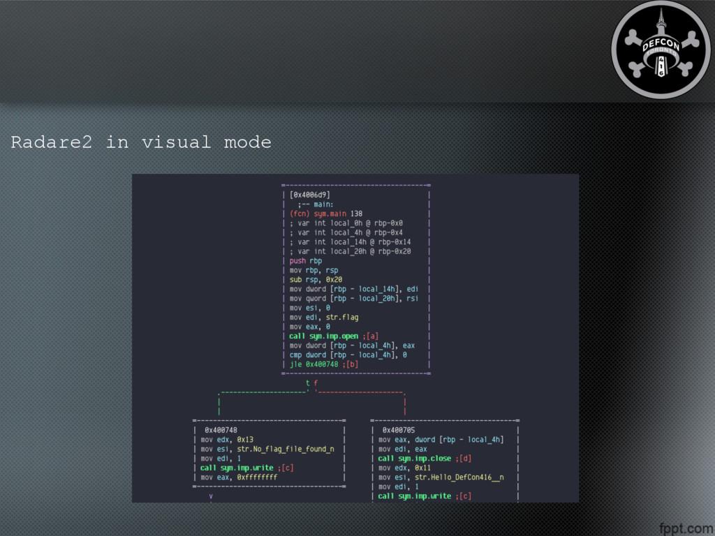 Radare2 in visual mode