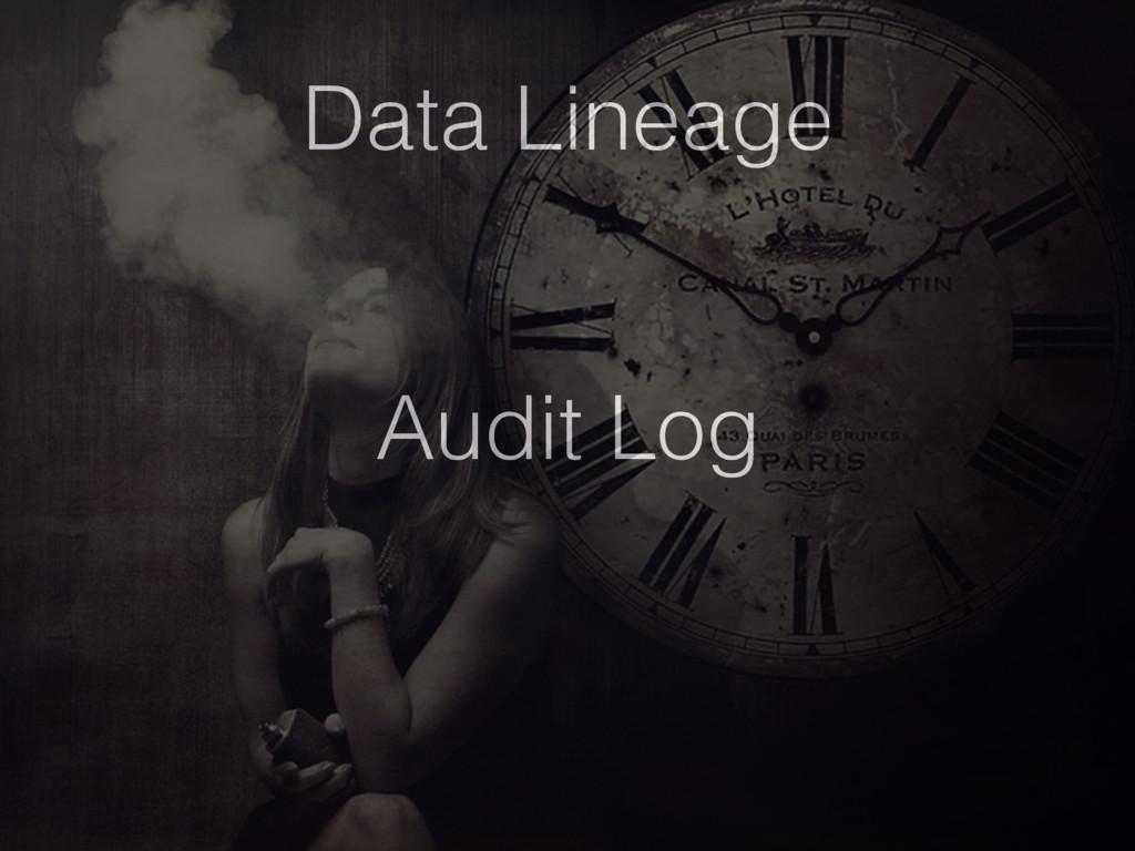 Data Lineage Audit Log