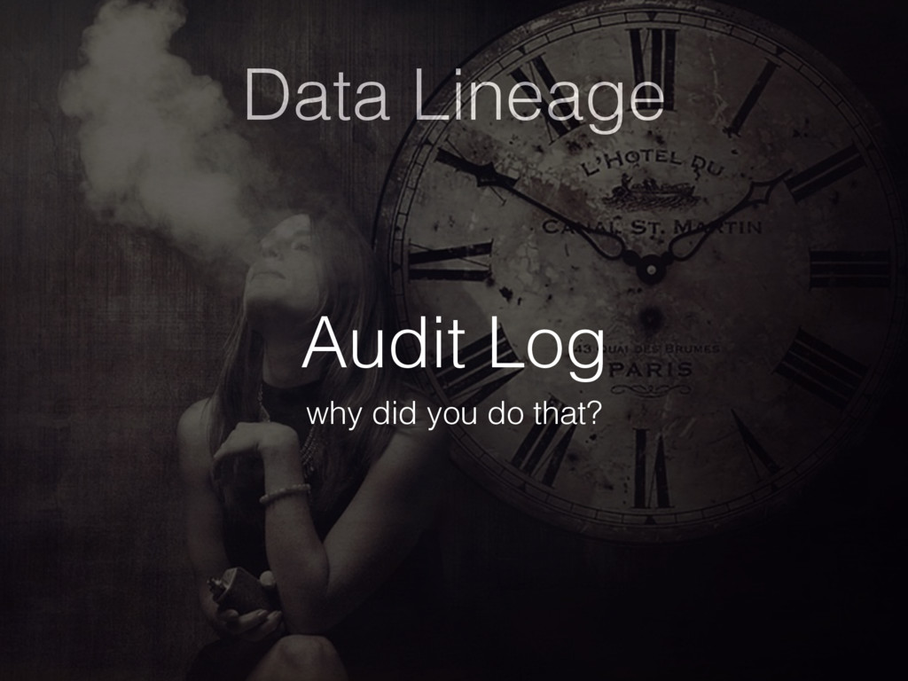 Data Lineage Audit Log why did you do that?