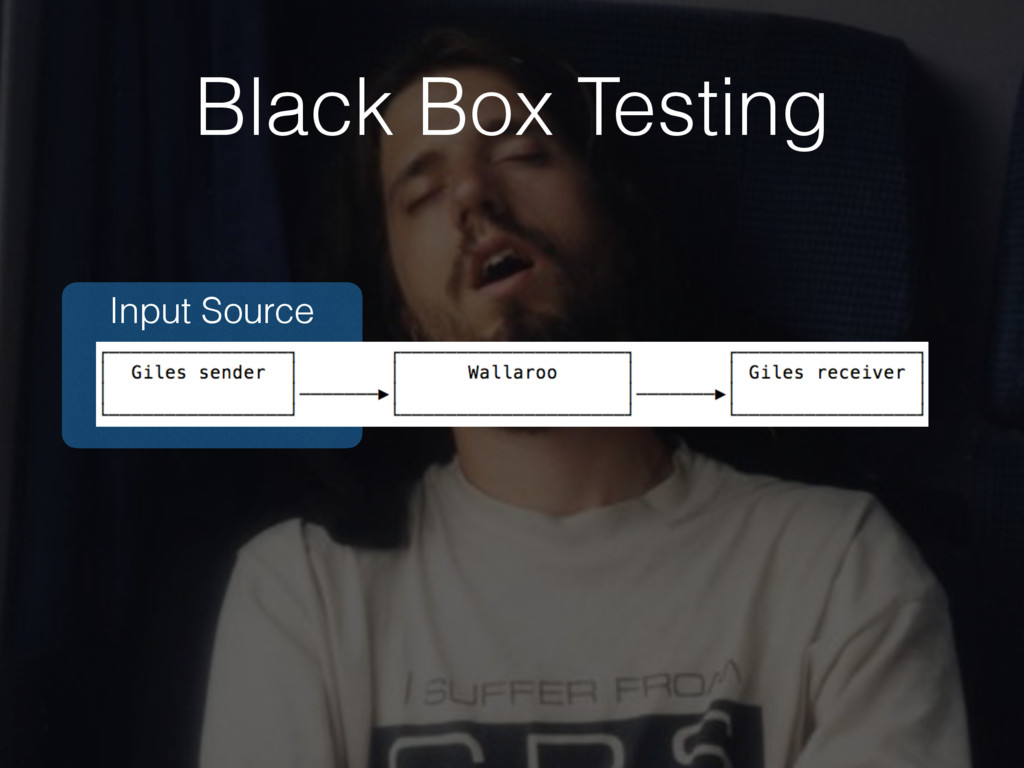 Input Source Black Box Testing