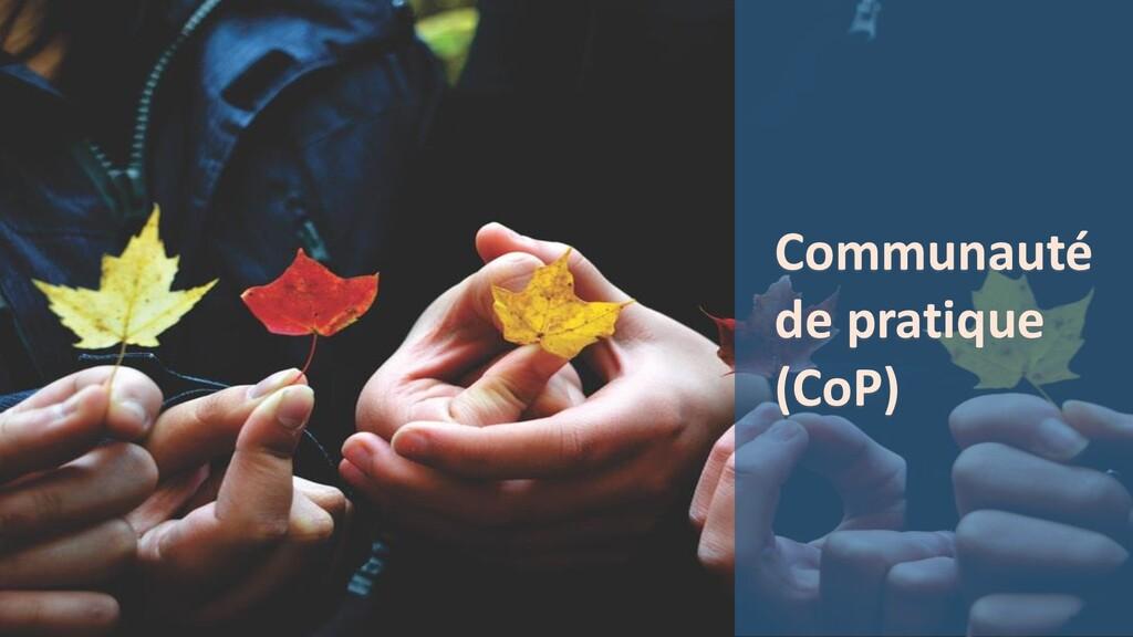 Communauté de pratique (CoP)