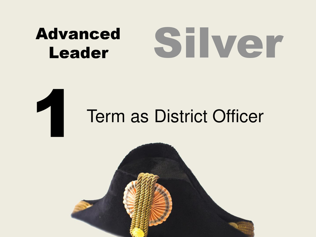 Advanced Leader Term as District Officer 1 Silv...