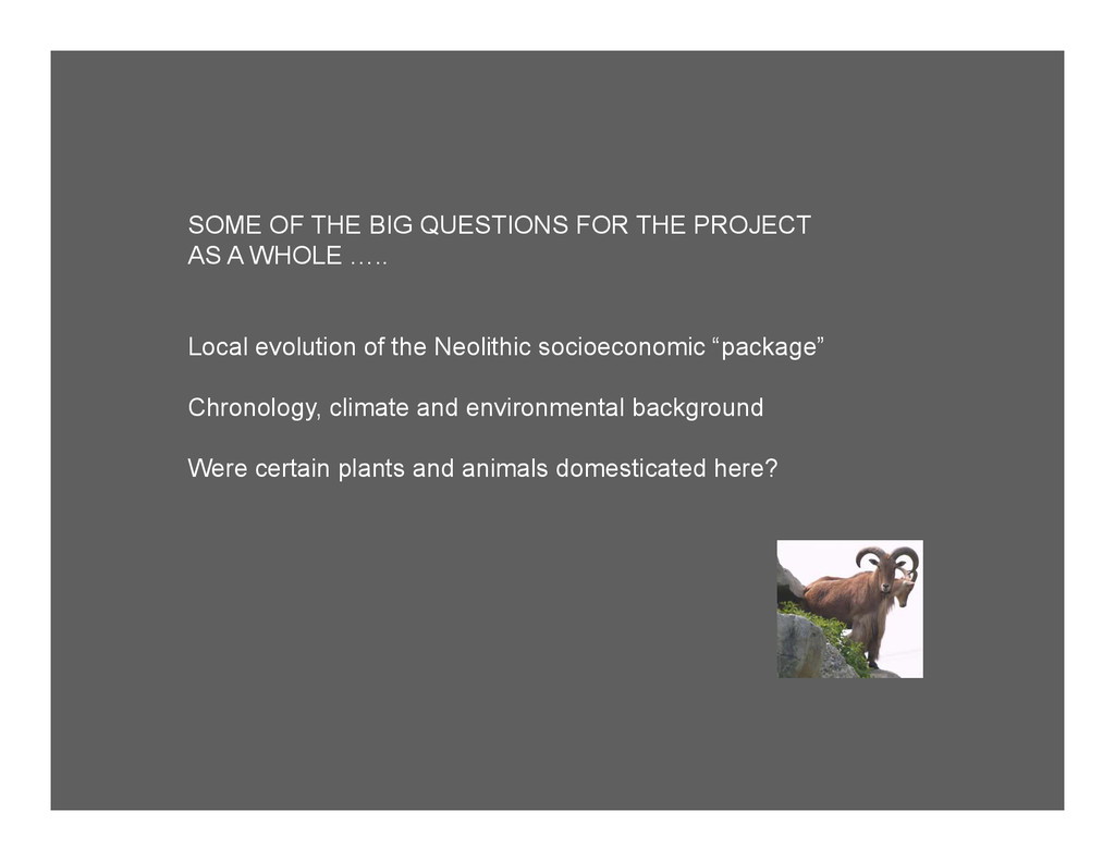 SOME OF THE BIG QUESTIONS FOR THE PROJECT AS A ...