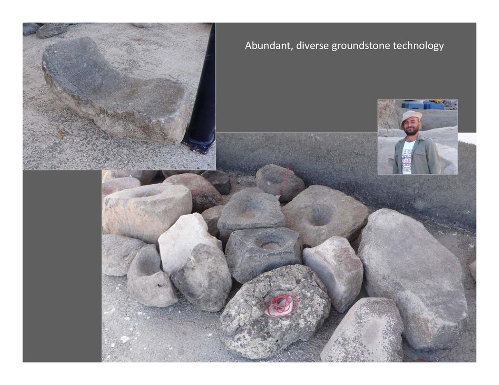 Abundant, diverse groundstone technology