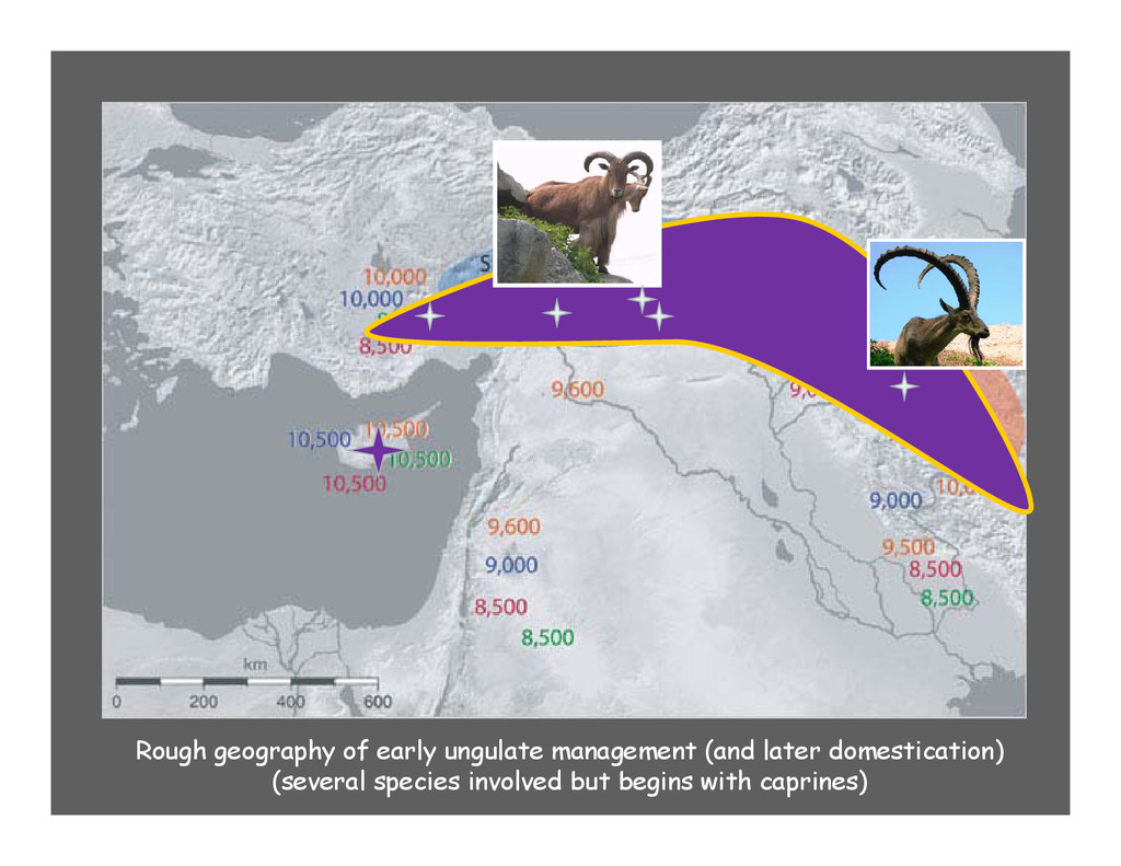 Rough geography of early ungulate management (a...