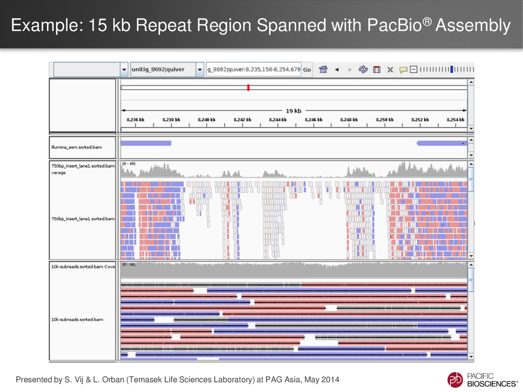 Example: 15 kb Repeat Region Spanned with PacBi...