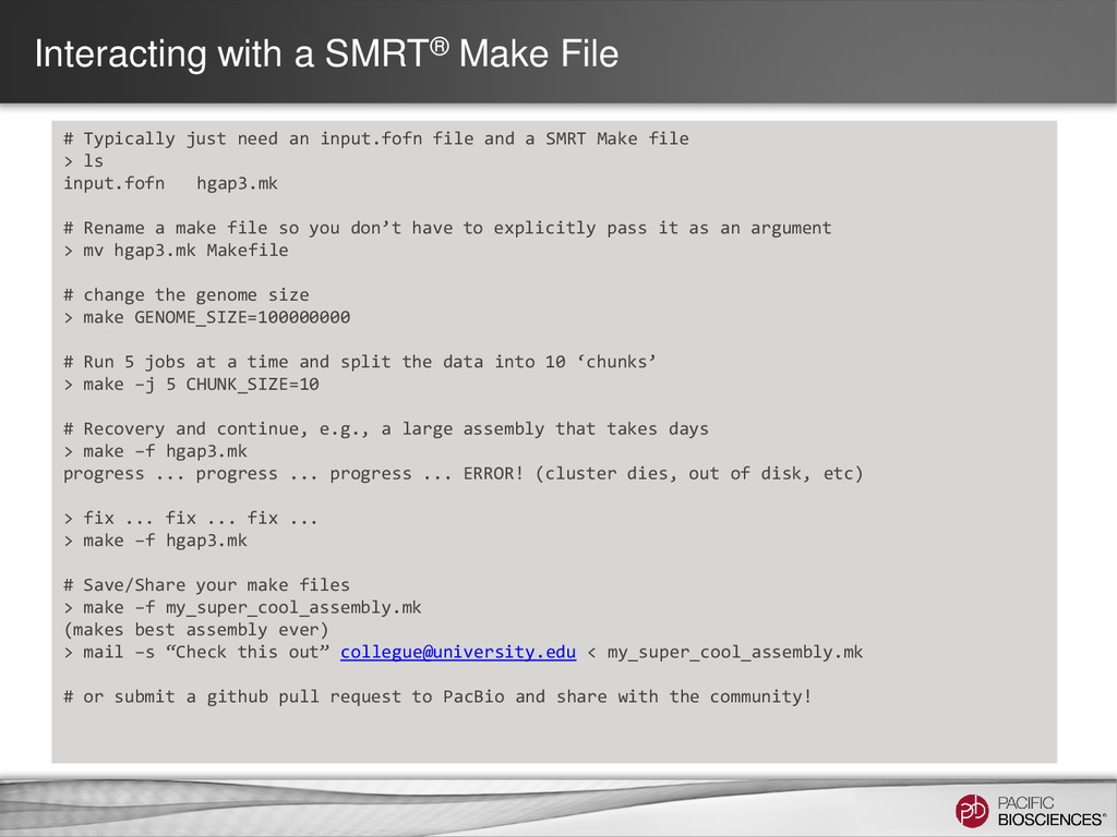 Interacting with a SMRT® Make File # Typically ...