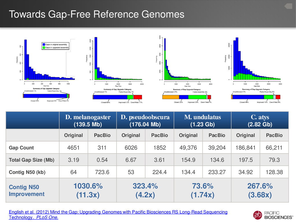 Towards Gap-Free Reference Genomes English et a...