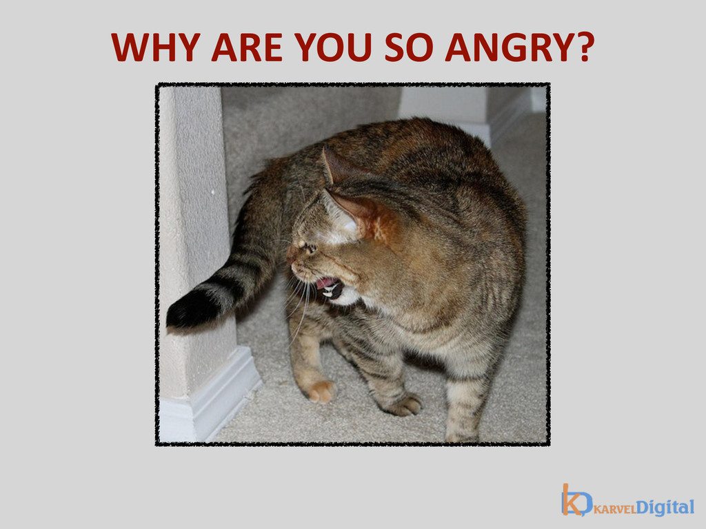 WHY ARE YOU SO ANGRY?