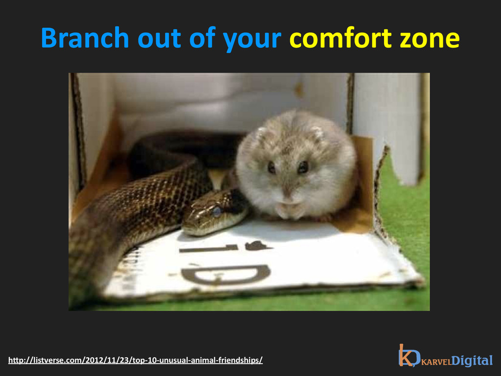 Branch out of your comfort zone ...