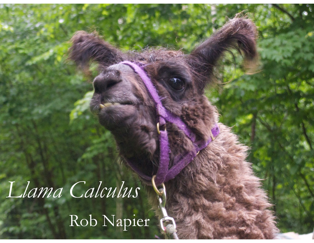 Llama Calculus Rob Napier