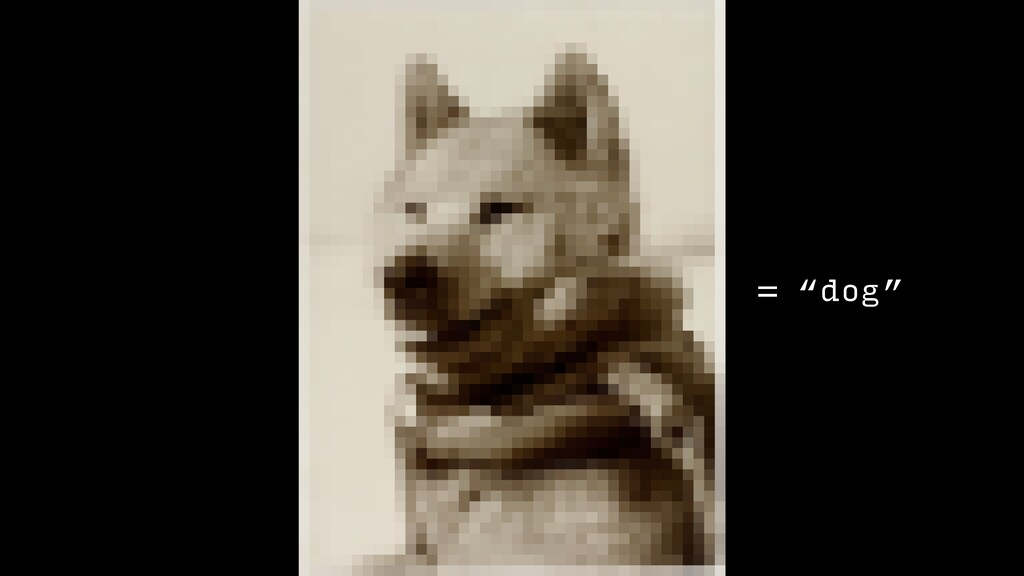 """= """"dog"""""""