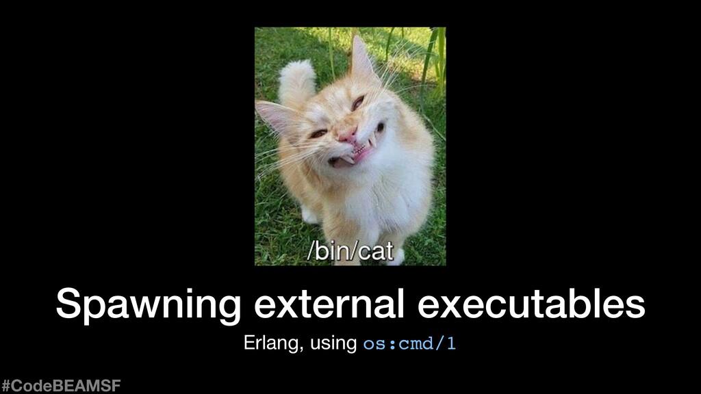 Spawning external executables Erlang, using os:...