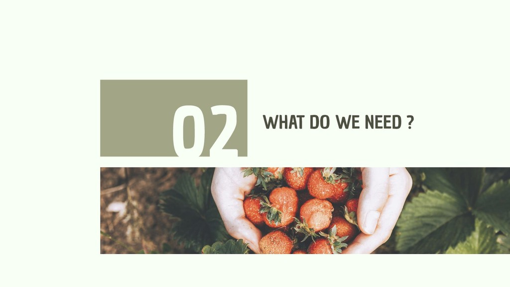 WHAT DO WE NEED ? 02