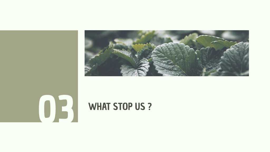 WHAT STOP US ? 03