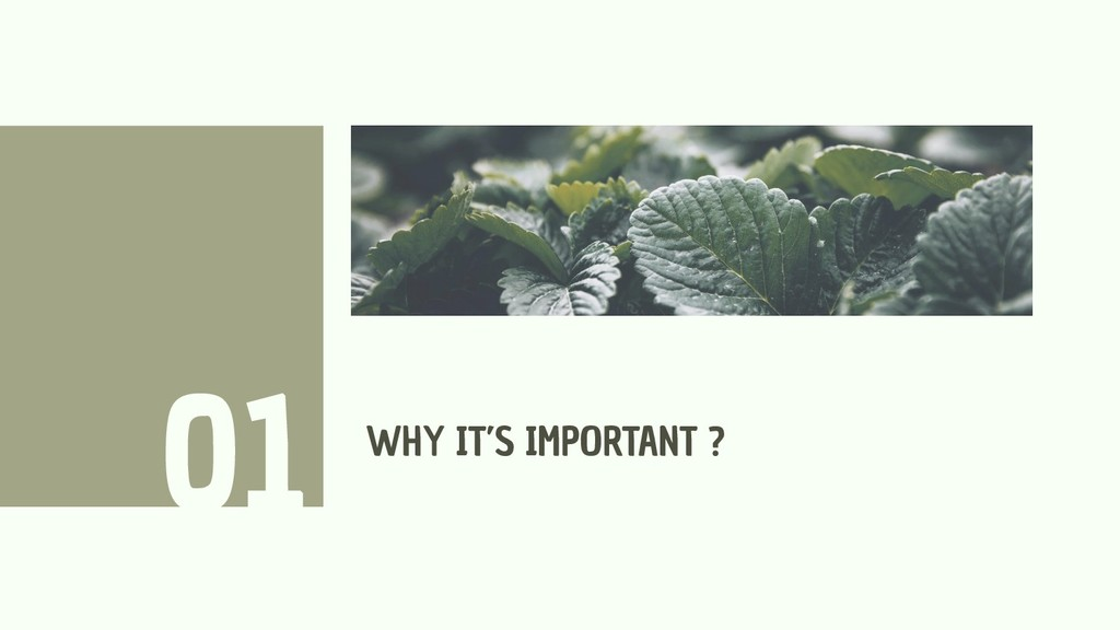 WHY IT'S IMPORTANT ? 01