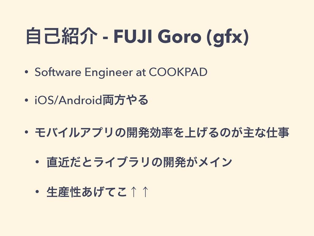 ࣗݾհ - FUJI Goro (gfx) • Software Engineer at C...