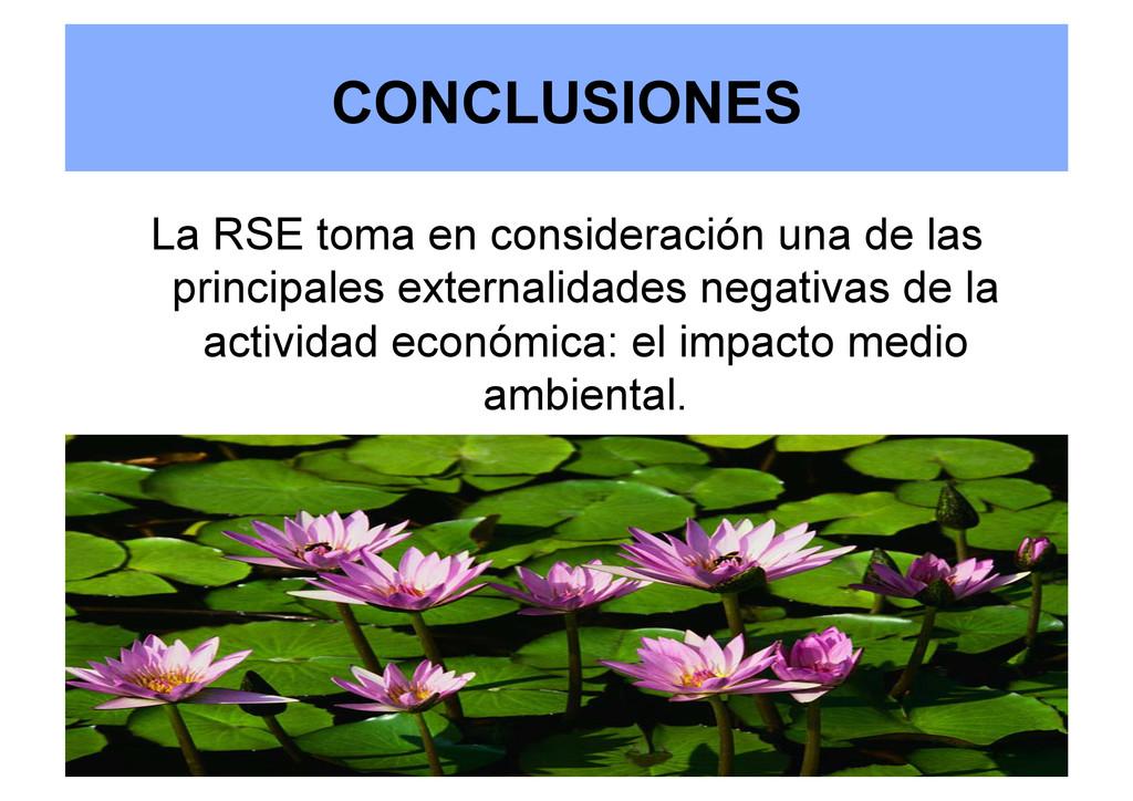 CONCLUSIONES La RSE toma en consideración una d...
