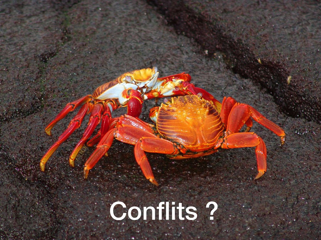 Conflits ?