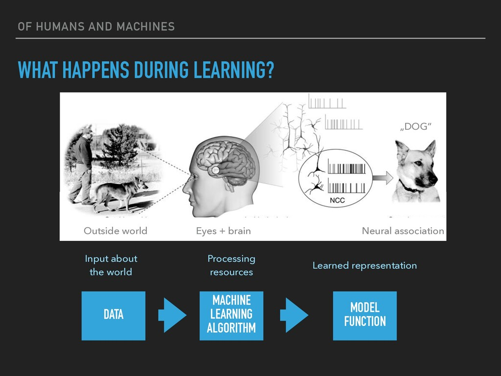 OF HUMANS AND MACHINES WHAT HAPPENS DURING LEAR...