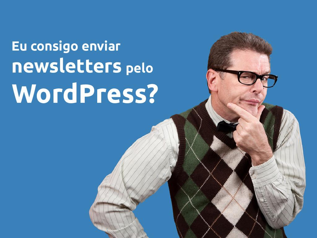 Eu consigo enviar newsletters pelo WordPress?