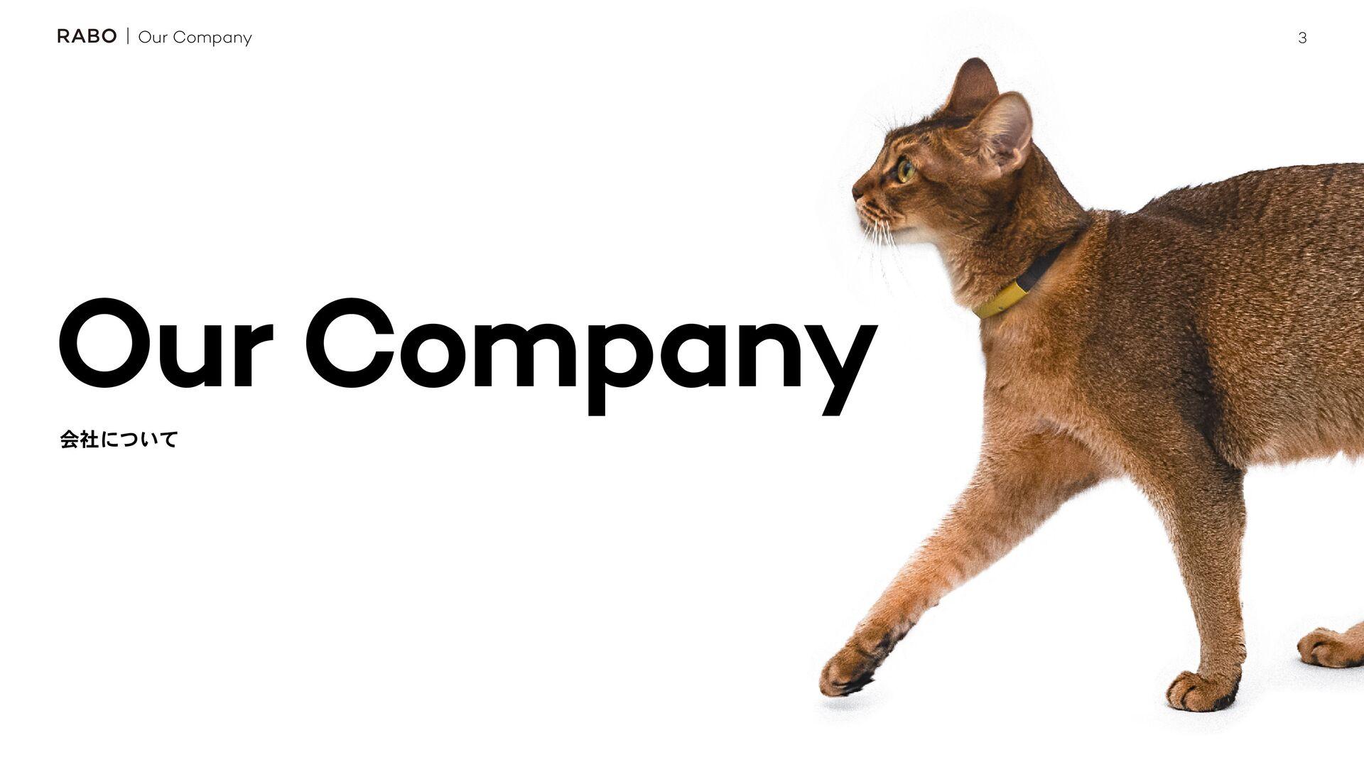 3 Our Company ձࣾʹ͍ͭͯ Our Company