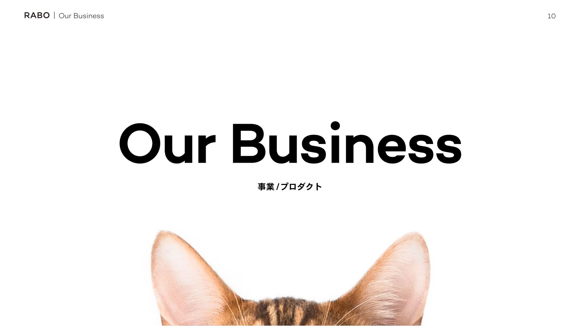 10 Our Business ۀ ϓϩμΫτ Our Business