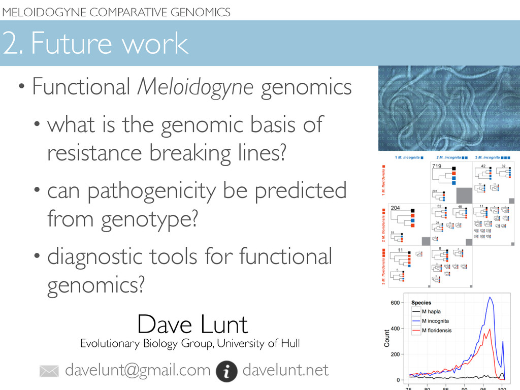 MELOIDOGYNE COMPARATIVE GENOMICS 2. Future work...