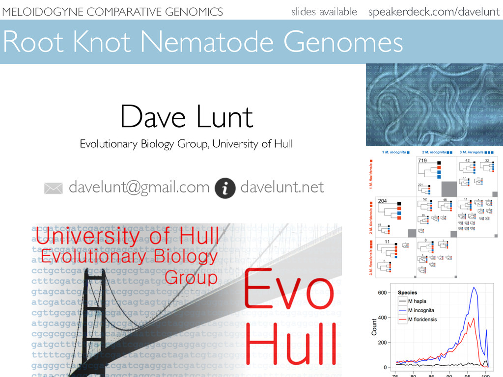 MELOIDOGYNE COMPARATIVE GENOMICS Root Knot Nema...