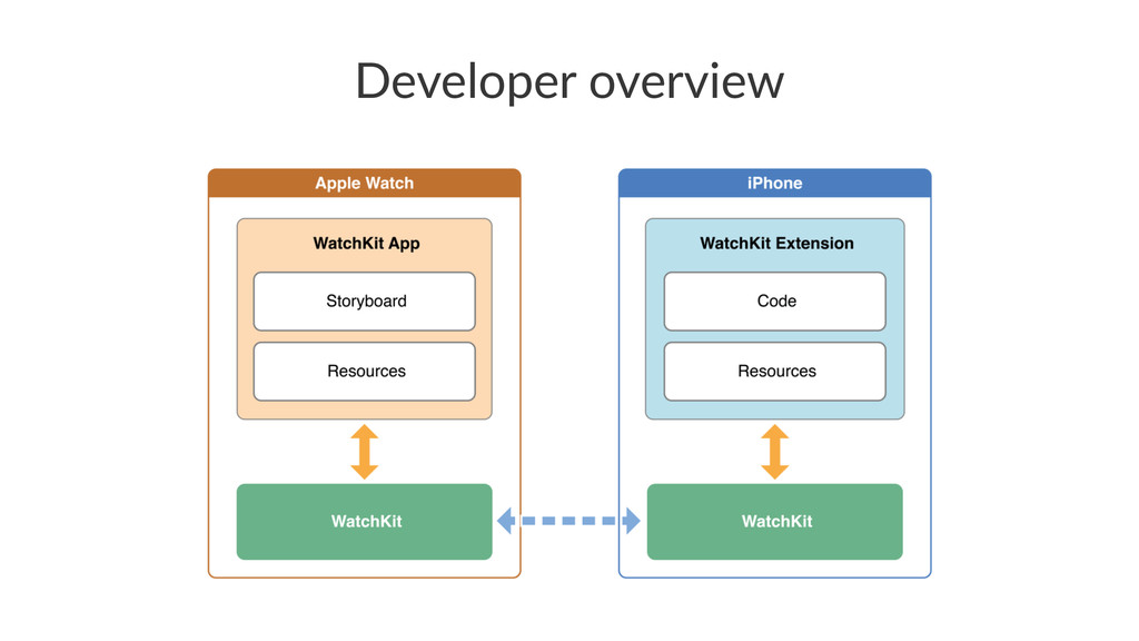 Developer(overview