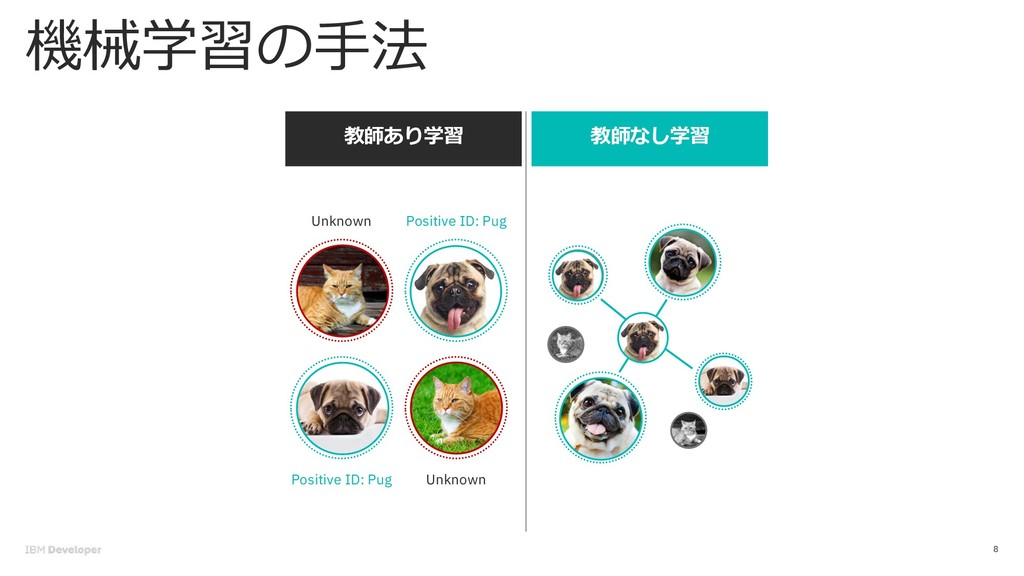 8 dog cat cat dog Positive ID: Pug Unkn...