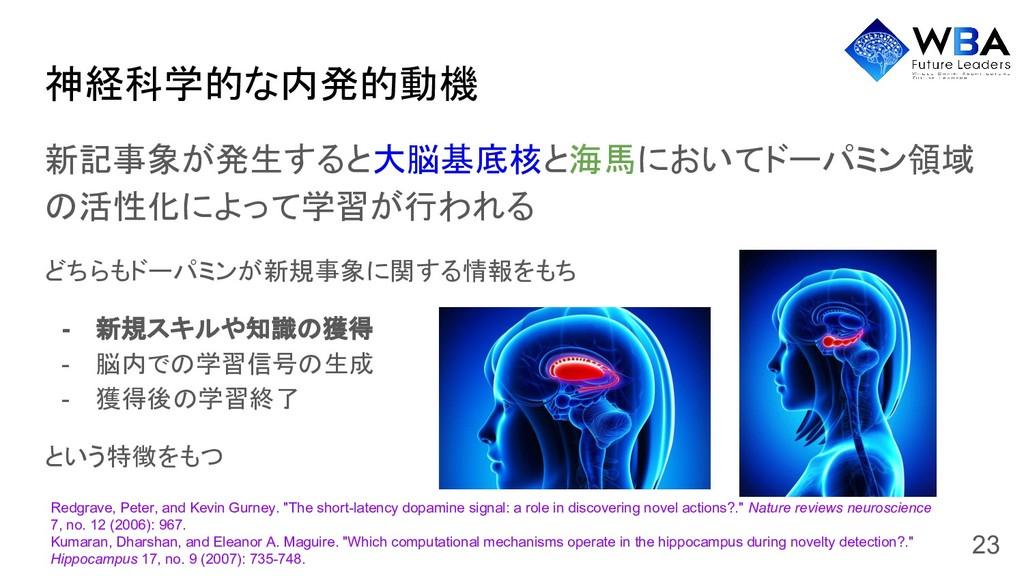 神経科学的な内発的動機 新記事象が発生すると大脳基底核と海馬においてドーパミン領域 の活性化に...