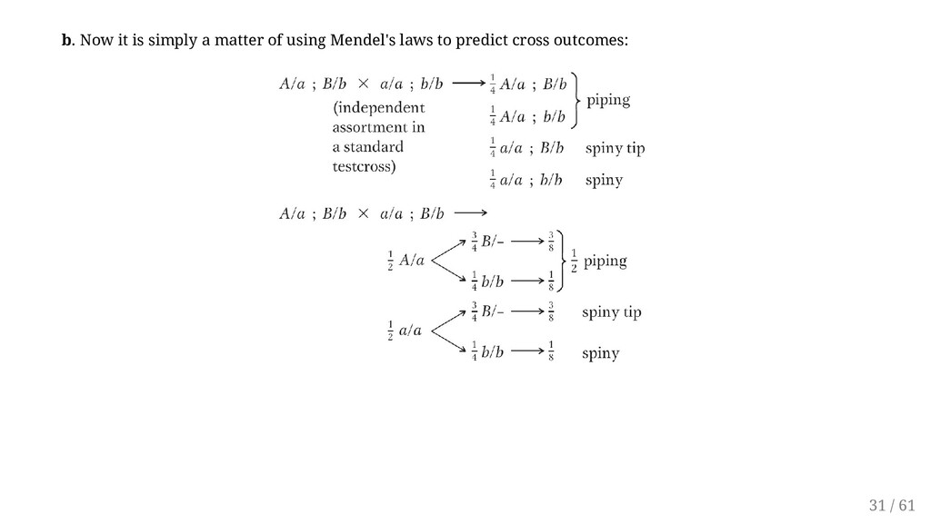 b. Now it is simply a matter of using Mendel's ...