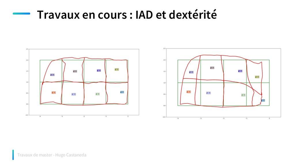 Travaux en cours : IAD et dextérité Travaux de ...