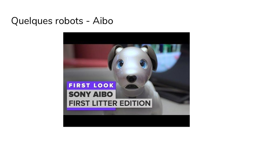 Quelques robots - Aibo