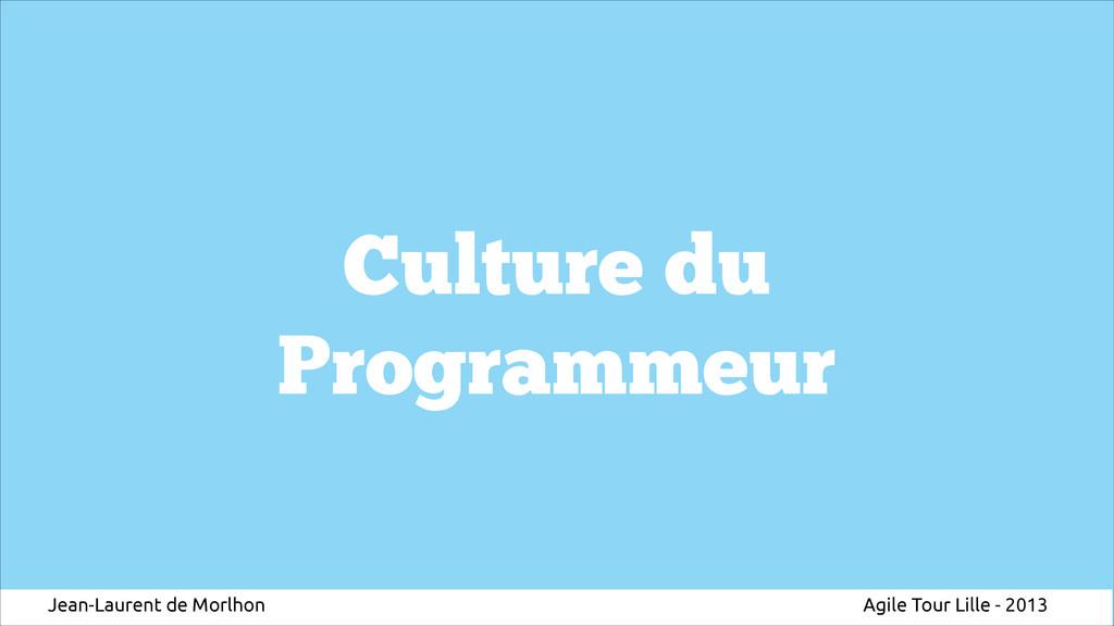Culture du Programmeur Jean-Laurent de Morlhon ...