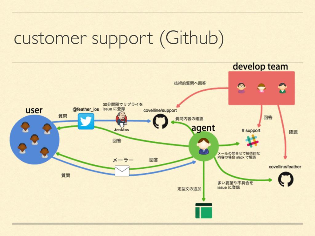customer support (Github)