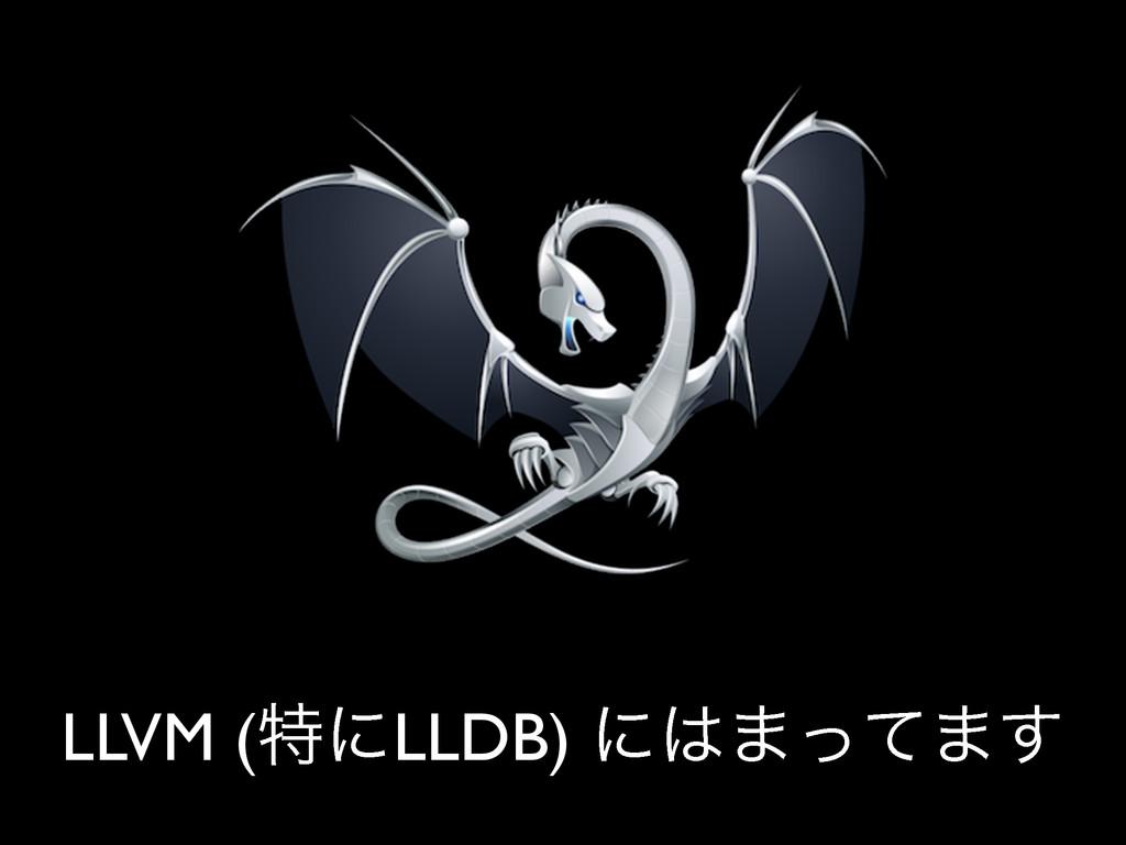 LLVM (ಛʹLLDB) ʹ·ͬͯ·͢