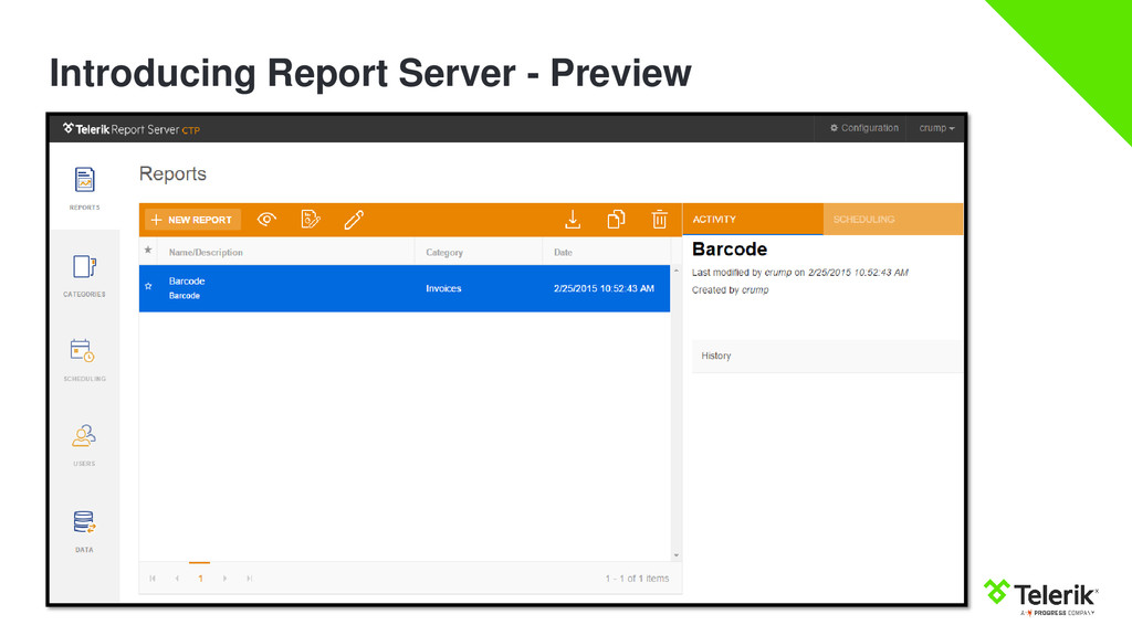 Introducing Report Server - Preview