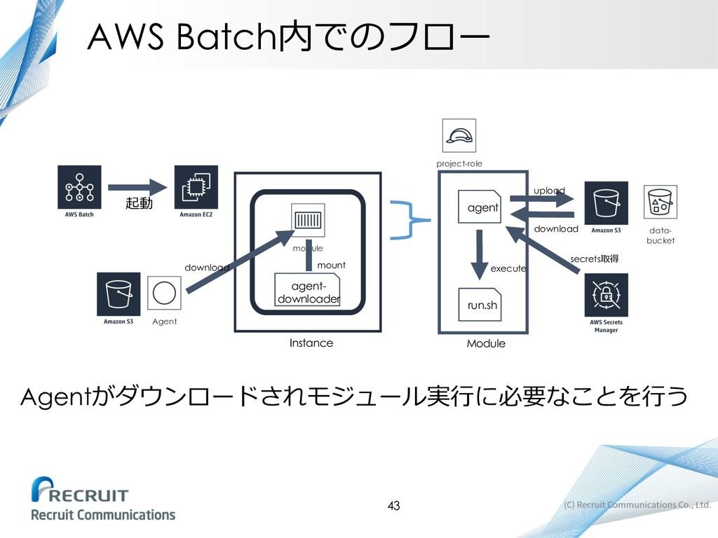 AWS Batch  module  agent- downloader Ins...