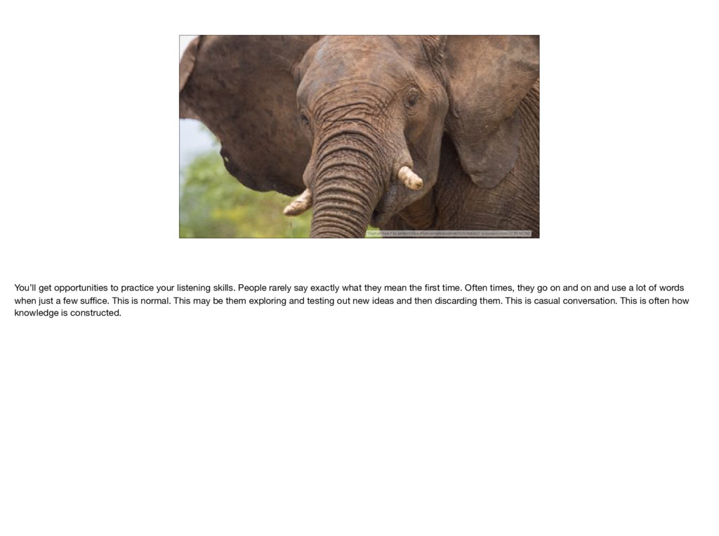 """Elephant Ears I"" by jomilo75 https://flickr.com..."