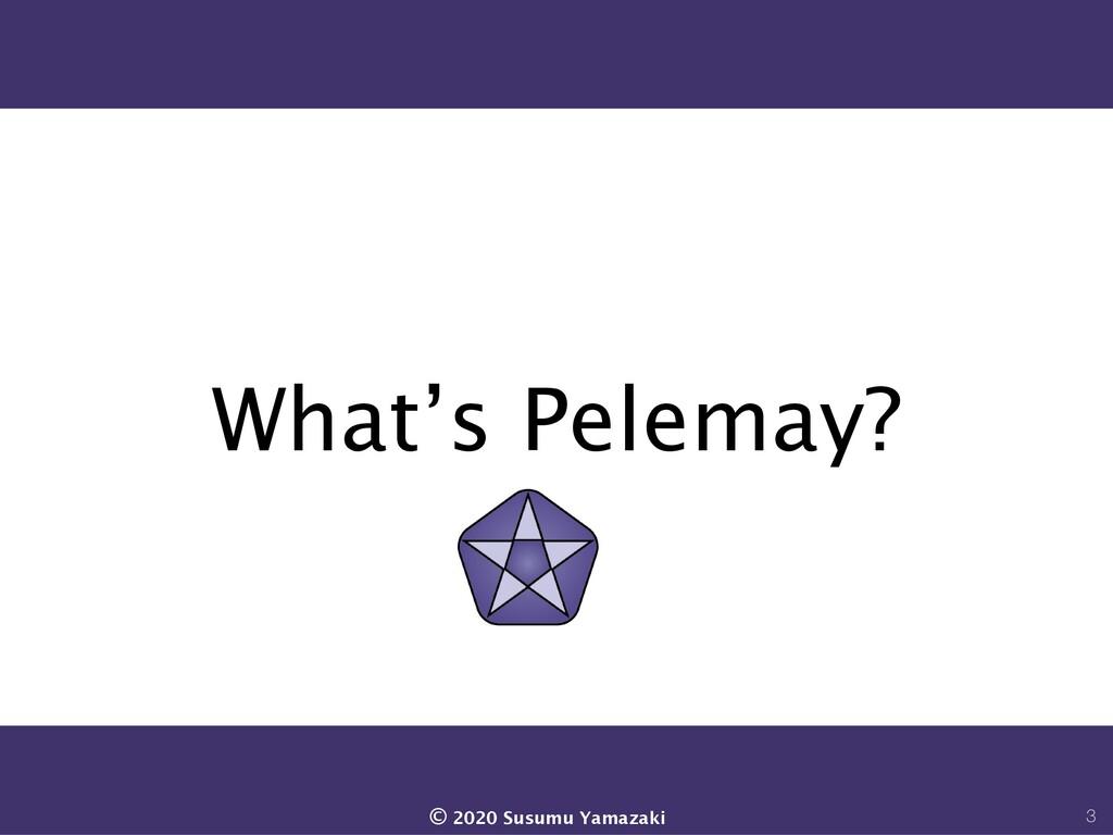 What's Pelemay? 3 © 2020 Susumu Yamazaki